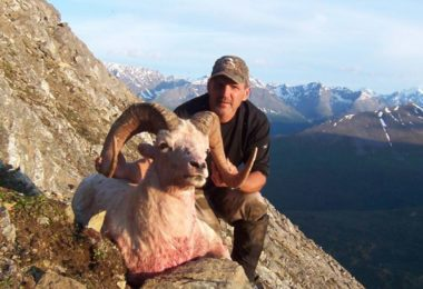 Fully guided alaska dall sheep hunts with steve johnson of our alaska dall sheep hunts are normally 10 day hunts in the chugach range and the alaska range we have sucessfully guided for trophy alaska dall sheep in sciox Choice Image